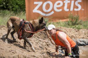 Hard Dog Race Base 2020 @ Góra Kamieńsk | Kamieńsk | województwo łódzkie | Polska