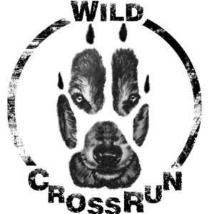 2. Wild Cross Run @ Dziećmorowice | Dziećmorowice | Województwo dolnośląskie | Polska